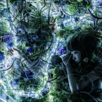 Aimer with chelly「ninelie」